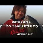 【デュオ】春の霞ヶ浦水系 ジャークベイトのワカサギパターン / 酒井俊信