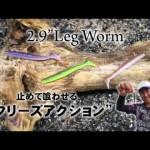 【ゲーリーインターナショナル】2.9″レッグワーム ~解説・アクション編~
